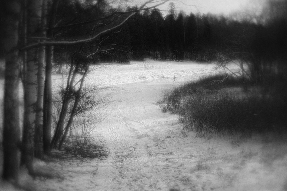monoclemania-pavlovsk-park-02.jpg