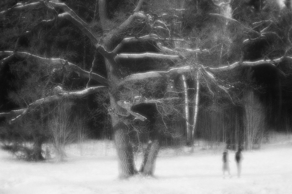 monoclemania-pavlovsk-park-08.jpg