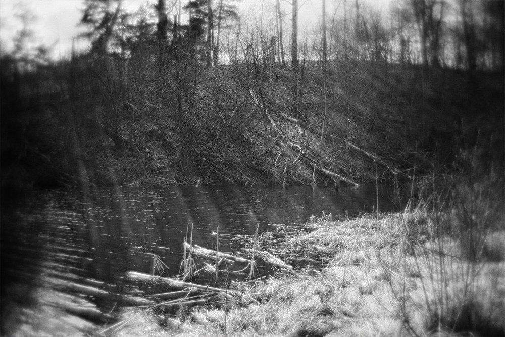 monoclemania-pskov-province-008.jpg