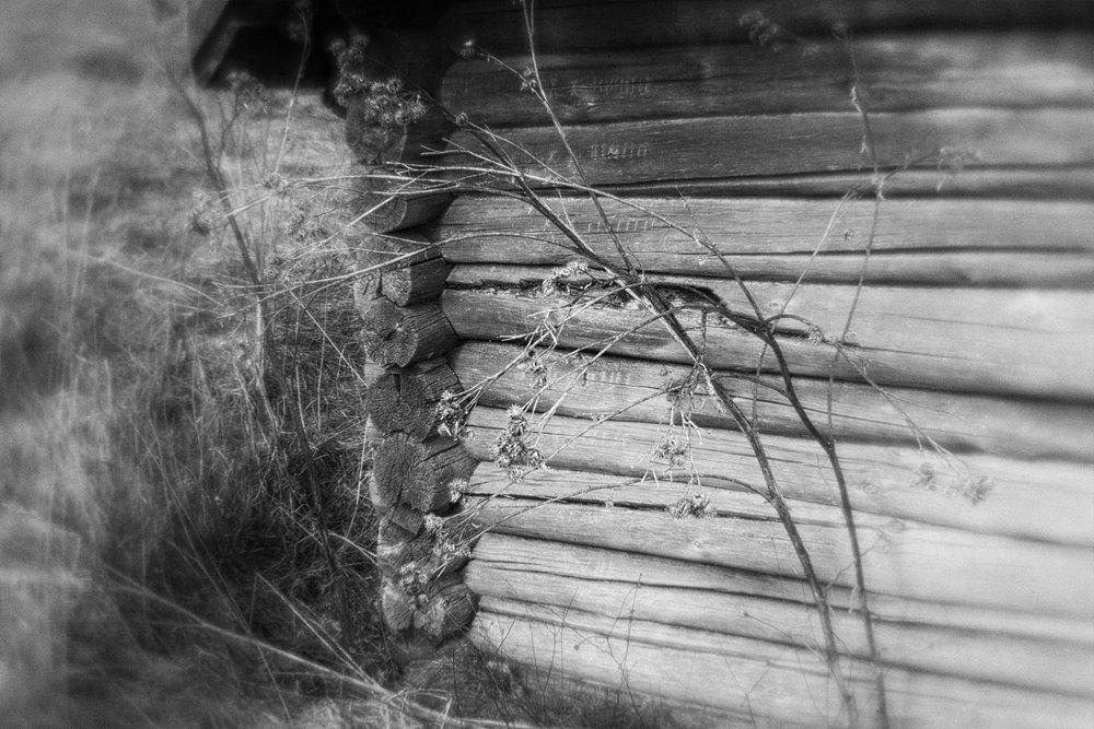 monoclemania-pskov-province-010.jpg