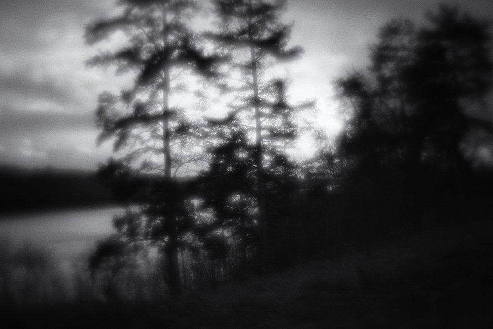 monoclemania-pskov-province-066.jpg