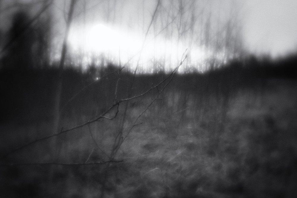 monoclemania-pskov-province-067.jpg