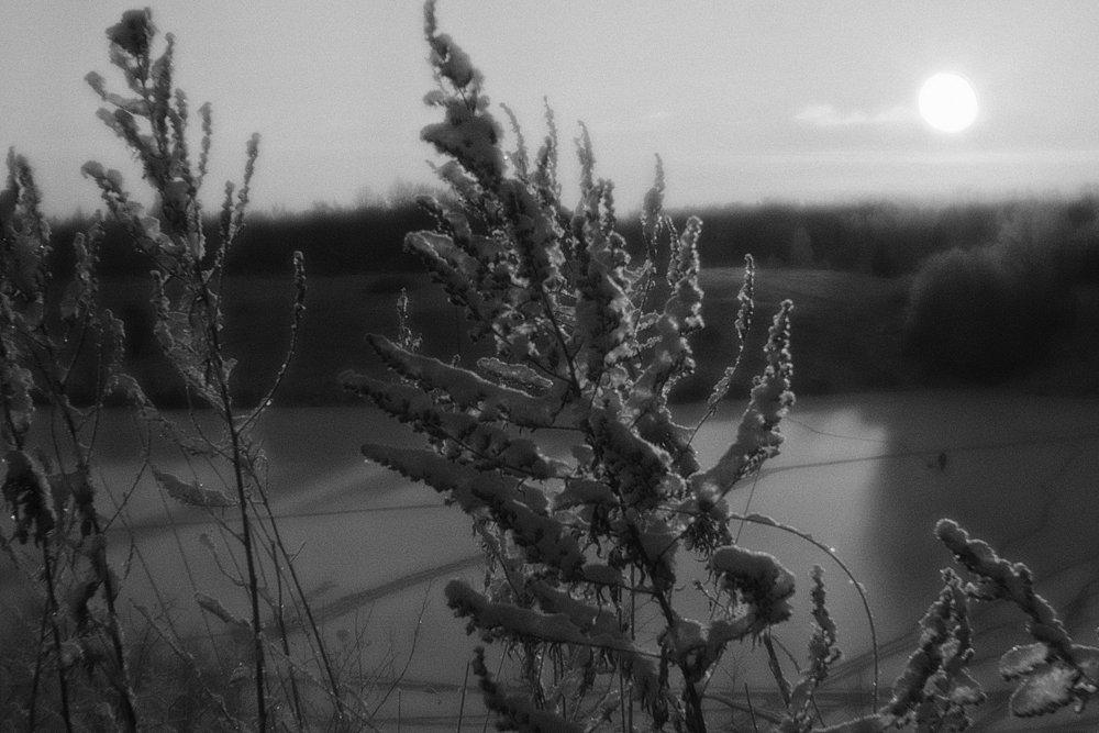 monoclemania-pskov-province-077.jpg