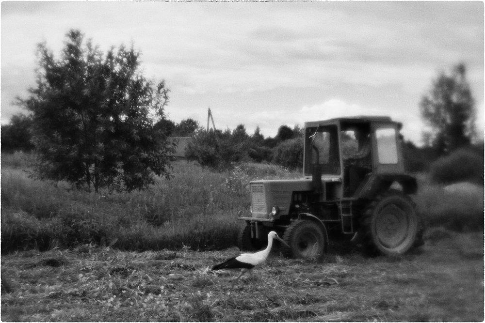monoclemania-pskov-province-087.jpg