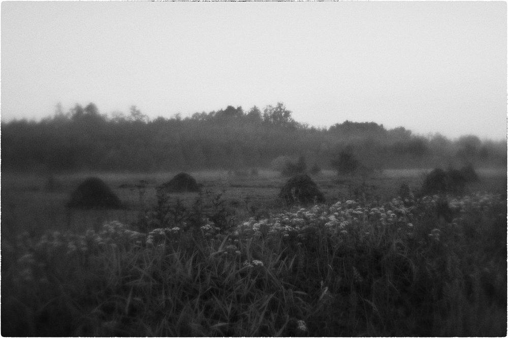 monoclemania-pskov-province-089.jpg