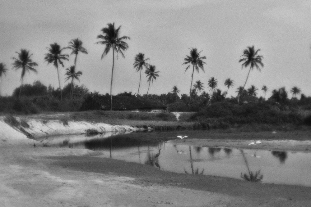 monoclemania-India-01.jpg