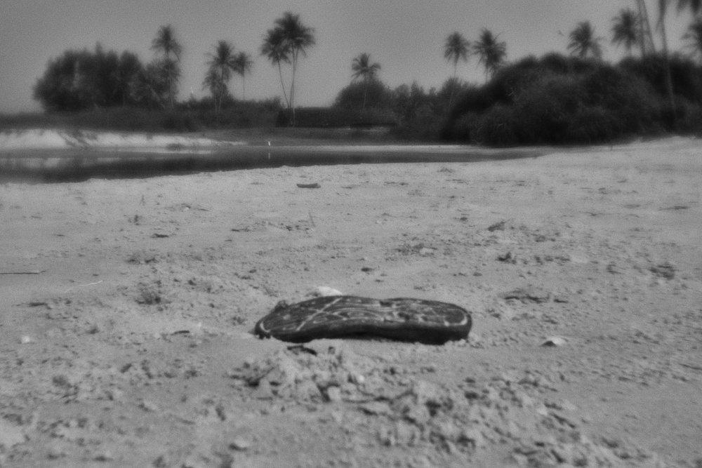 monoclemania-India-02.jpg