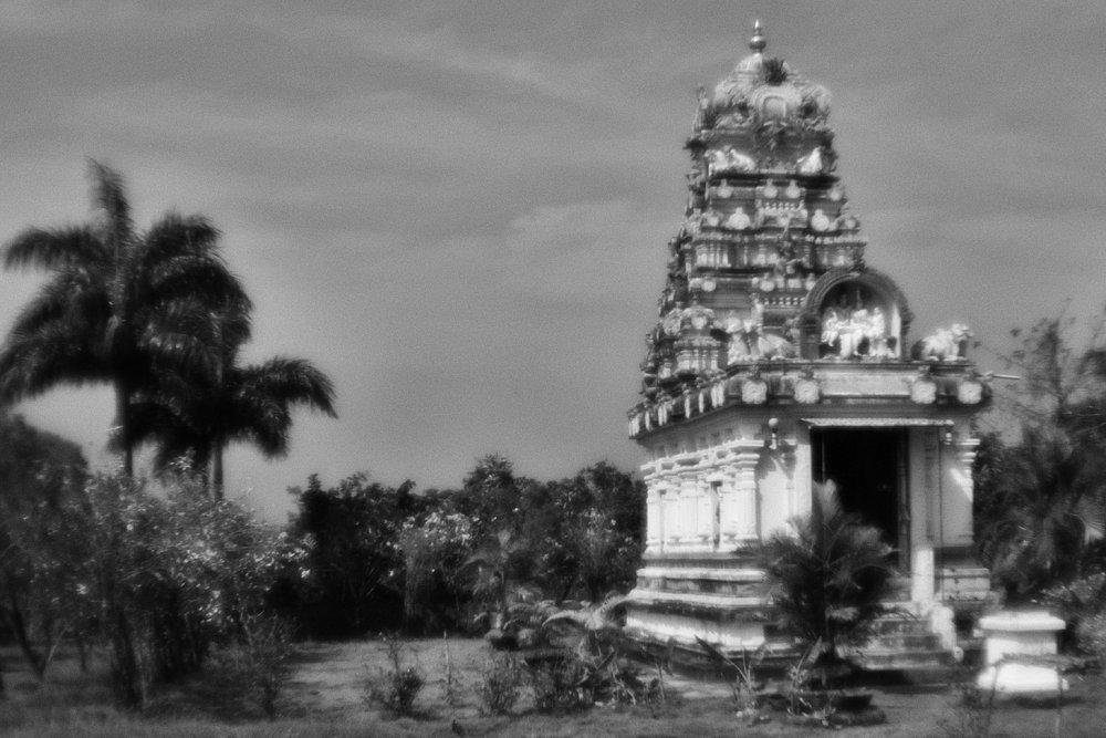 monoclemania-India-13.jpg